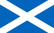 NEWS_SCOTTISH FLAG